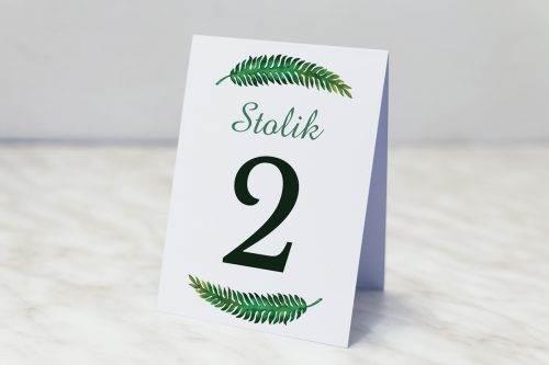 eukaliptus numer stolika