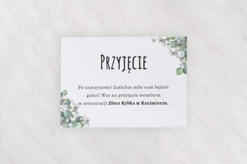 dodatkowa karteczka do zaproszeń botaniczne - gipsówka
