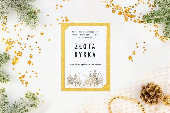 dodatkowa-karteczka-do-zaproszenia-zimowe-las-papier-matowy-podkladki-brokatowa-srebrna-c6